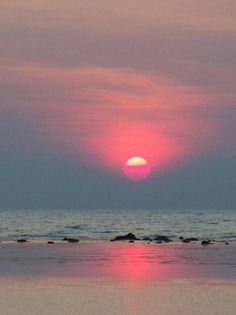 Pink Sky at sunset on the beach Beautiful World, Beautiful Places, Pink Sky, Pink Sunset, Ocean Sunset, Beautiful Sunrise, Beautiful Beach, Pretty Pictures, Scenery