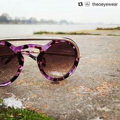 Theo Sunglassess