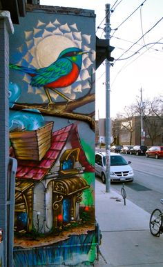 Murals - Shalak, Colour and Creation!