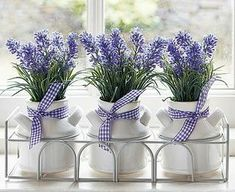 Three little bunches of lavender in white ceramic pots. Tied with a coordinating gingham lavender coloured ribbon in a metal surround. Lavender Cottage, Lavender Blue, Lavender Fields, Lavender Flowers, Purple Flowers, Beautiful Flowers, Lavender Decor, All Things Purple, Flower Pots