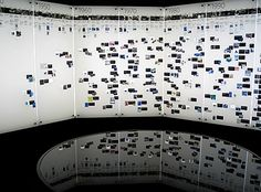 timeline wall - the life of CM through photos! can be along the bathroom hall