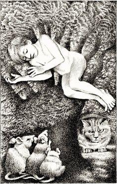 'Fly by Night' - Randall Jarrell and Maurice Sendak. Maurice Sendak, Literary Criticism, Art Inspo, Mythology, Childrens Books, Illustration Art, Pen Drawings, Writers, Fairytail