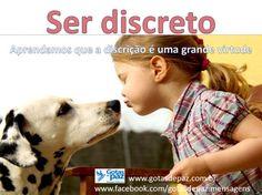 Serdiscreto