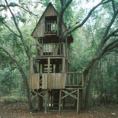 treehouse | The Treehouse