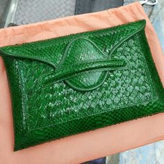 Bottega Veneta Snake Leather Clutch