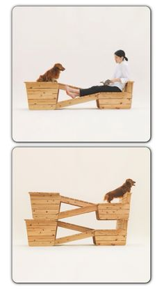 From the website 'Architecture for Dogs'. Some different but cool designs on this website