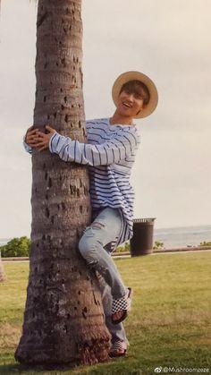 "thekoreanbigbang: ""Daesung in Hawaii Photobook Source: Mushroomzeze "" Daesung, Vip Bigbang, Big Bang, G Dragon, Yg Entertainment, Bigbang Wallpapers, Flower Road, Yg Artist, Korean K Pop"
