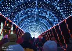 bentleyville christmas lights duluth mn north shore christmas lights vacation destinations fun