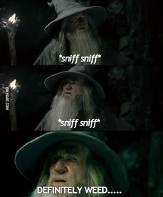 The Best Funny Pictures GIF and MEMES about Funny - When I try to create a new account. Best MEME and GIFS about Funny - When I try to create a new account and Funny Pictures Funny Quotes, Funny Memes, Jokes, That's Hilarious, It's Funny, Lotr Quotes, Nerd Funny, 9gag Funny, Daily Funny