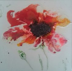 Poppy by Jill Wright