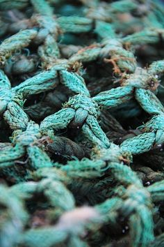 Mariana Dias. Aqua teal rope tied