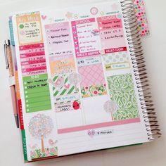 Midweek!  #Spring by vynguyen.plans