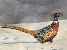 Christmas pheasant by Miranda Markham