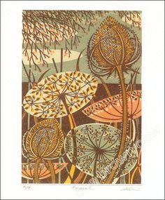 Teasel greeting card - wood engraving design by Angie Lewin.