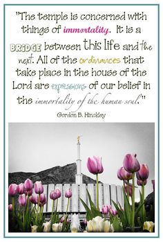 LDS Temple Quotes    #LDSQuotes #MormonLink.com    #MormonFavorites.com