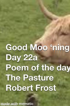 Good Morning Nature, Good Morning Wishes, Poem A Day, Cool Lyrics, Grateful For You, Robert Frost, I Appreciate You, I Trusted You, Positive Messages