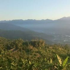 Workaway in Taiwan. Help us to create a new eco-village in Nantou, Taiwan