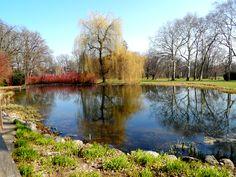 A beautiful pond  #graz #austria #travel #palace