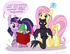 How to Train Your Dragon/My Little Pony