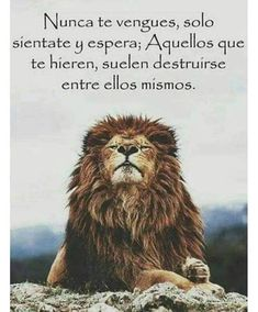 56 Short Inspirational Quotes That Will Inspire You (Fast) 56 Short Inspirational Quotes That Will Inspire You 56 Short Inspirational Quotes That Will Inspire You Top 56 Short Inspirational Quotes Th Cruz Azul Vs America, Bible Verses Quotes, Life Quotes, Foto Top, My Silence, Italian Quotes, Short Inspirational Quotes, Yoga Everyday, Yoga Inspiration