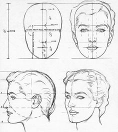 Image result for artists measurements for female face