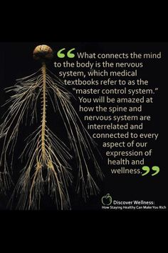 Chiropractic philosophy Chiropractic is a health care profession that evaluates the mind/body connection and function of the nervous system. Benefits Of Chiropractic Care, Chiropractic Quotes, Family Chiropractic, Chiropractic Wellness, Chiropractic Office, Medical Textbooks, Spine Health, Belleza Natural, Homeopathy
