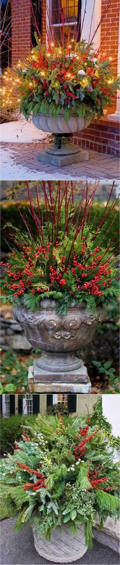18 Winter Container Garden Ideas #christmasdecorations #christmasdecor #christmastree #cristmas #merrychristmas #xmas #christmas #santa #santaclaus #christmastime #christmas2016#christmastree #christmasparty#christmasgift #christmaslights#christmaseve #christmasday#christmasiscoming #christmasmarket#christmasdecorations #christmasmood#xmas #xmastree #xmas2016 #holiday#holidays #holidayseason #holidayspirit#holidays2016 #holidaycountdown