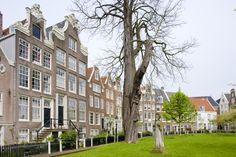 El #Begijnhof es uno de los patios interiores más antiguos de #Amsterdam. http://www.viajaraamsterdam.com/lugares-para-visitar-en-amsterdam/begijnhof/ #turismo #Holanda