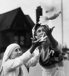 © Bettman / CORBIS, June Blessed Mother Teresa of Calcutta releasing peace dove in Toronto, Canada. She and Robert Morgan, on behalf of Youth Corps, release a dove as a symbol for peace in front of people at Varsity Stadium. Catherine Zeta Jones, Juan Pablo Ll, Saint Teresa Of Calcutta, Mother Teresa Quotes, Catholic Saints, Nun Catholic, Catholic Prayers, Portraits, Blessed Mother