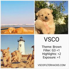 camera effects,photo filters,camera settings,photo editing Photography Themes, Vsco Photography, Photography Filters, Photography Editing, Vsco Filters Summer, Best Vsco Filters, Vsco Pictures, Editing Pictures, Vsco Filter Bright