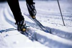 Cross Country Skiing: I'm not a big fan of winter but, if I'm going to have to endure snow, this is the way to do it.