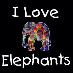 Elephant love due to my precious angel in Heaven. Image Elephant, Elephant Love, Elephant Art, African Elephant, Elephant Meaning, Elephant Quotes, All About Elephants, Elephants Never Forget, Beautiful Creatures