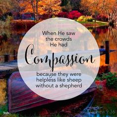 When He saw the crowds, He had compassion for them, because they were harassed and helpless, like sheep without a shepherd. Matthew 9:36  #InstaEncouragements #instagood #wisdomwords #photooftheday ThankfulThursday