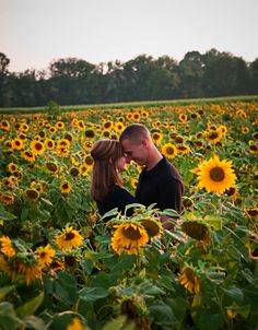 Can you please take an engagement pic like this??!!