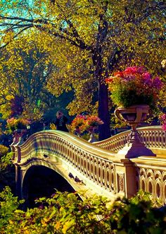 Bow Bridge in Central Park Manhattan, New York City Only Epics -> Follow Epic Travel