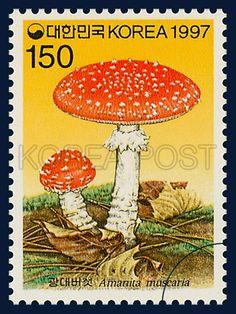 MUSHROOM SERIES(5th), Amanita muscaria, Mushroom, orange, white, brown, 1997 07 21, 버섯시리즈(다섯번째묶음), 1997 년 7월 21일, 1912, 광대버섯, postage 우표