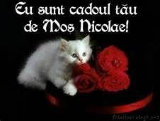 sfantul nicolae - Yahoo Image Search Results