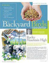 Backyard Bird Newsletter
