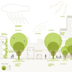 The Planners' Guide to Trees in the Urban Landscape, via www.tdag.org.uk