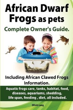 """Read """"African Dwarf Frogs as pets. The Complete Owner's Guide."""" by Elliott Lang available from Rakuten Kobo. Everything you need to know about African Dwarf Frogs and more. Guaranteed to answer all your questions, this book is a . African Frogs, Albino African, Dwarf Frogs, Frog Tank, Frog Habitat, Frog Activities, Pet Frogs, Class Pet, Fish Care"""