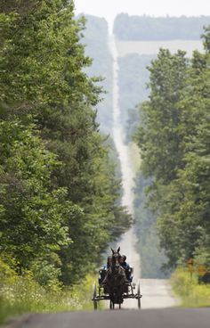 In this July 13, 2011, photo, Amish women ride in a buggy on their way home from shopping in an Amish country store in Centerville, N.Y.