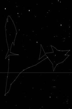 The Ancient Constellations are the largest work of art ever created! These new dot to dot drawings connect stars that are visible to the naked eye. The Pisces star sign of the zodiac represents the Fish in astrology Pisces Star Sign, Sagittarius And Capricorn, Gemini And Cancer, Zodiac Star Signs, Pisces Zodiac, Horoscope, Dotted Drawings, Pisces Fish, Pisces Constellation