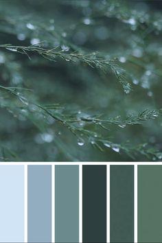 Color Pastel color palette from cacti.Pastel color palette from cacti. Color Schemes Colour Palettes, Nature Color Palette, Pastel Colour Palette, Colour Pallette, Bedroom Color Schemes, Color Palette Green, Popular Color Schemes, Coastal Color Palettes, Apartment Color Schemes