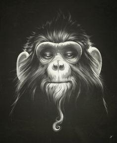 Illustrations by Lukas Brezak