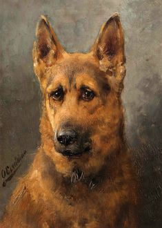 View German shepherd by Otto Eerelman on artnet. Browse upcoming and past auction lots by Otto Eerelman. Animal Paintings, Animal Drawings, War Dogs, Dog Portraits, Portrait Art, Dutch Artists, Beautiful Dogs, Dog Art, Dog Love