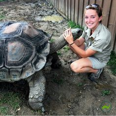 "706 Likes, 11 Comments - theTurtleRoom (@theturtleroom) on Instagram: ""One of our awesome team members Casey Leone @caseyjeanleone and an enormous Aldabra tortoise! These…"""