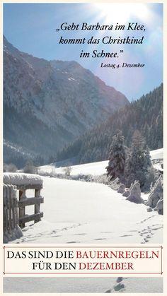 """""""Auf kalten Dezember mit tüchtigem Schnee folgt ein fruchtbares Land mit üppigem Klee."""" Aus überlieferten Naturbeobachtungen lassen sich oft Rückschlüsse auf das kommende Wetter ableiten. Snow, Mountains, Nature, Travel, Outdoor, Fertility, December, Poetry, Weather"""