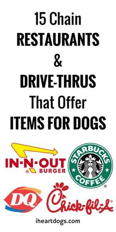 Treat your pup to something special by trying one of these!