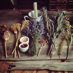 aesthetic, witchcraft, and wicca image - something with herbs perhaps? The Ancient Magus Bride, Hedge Witch, Witch Aesthetic, Plant Aesthetic, Practical Magic, Book Of Shadows, Potpourri, Herbalism, Creations