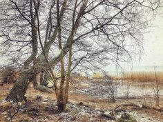 April in Finland. Snowy mornings and sunny afternoons. Sunny Afternoon, City Museum, Old Trees, Life Goes On, Iphone Photography, Mornings, Finland, Seaside, Sunnies